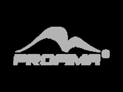 Logo Profima effective